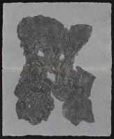 33_webak1966.jpg