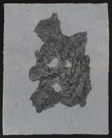 33_webak1974.jpg